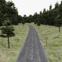 Road in forest, for game