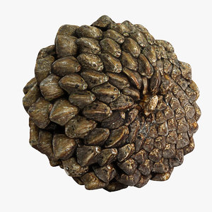 closed pinecone 3d 3ds