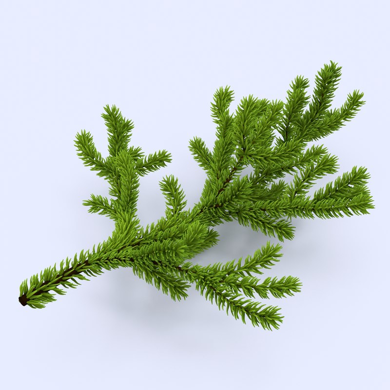 christmas branch 3d max