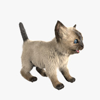 3ds max fur character animation