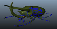 Chalcosoma Atlas Beetle + wings rigged (not shaded)