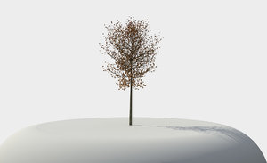 3ds tree architectural