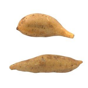 2x sweet potatoes 3d model