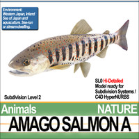 amago salmon 3ds