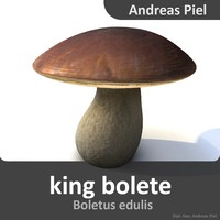3d 3ds king bolete