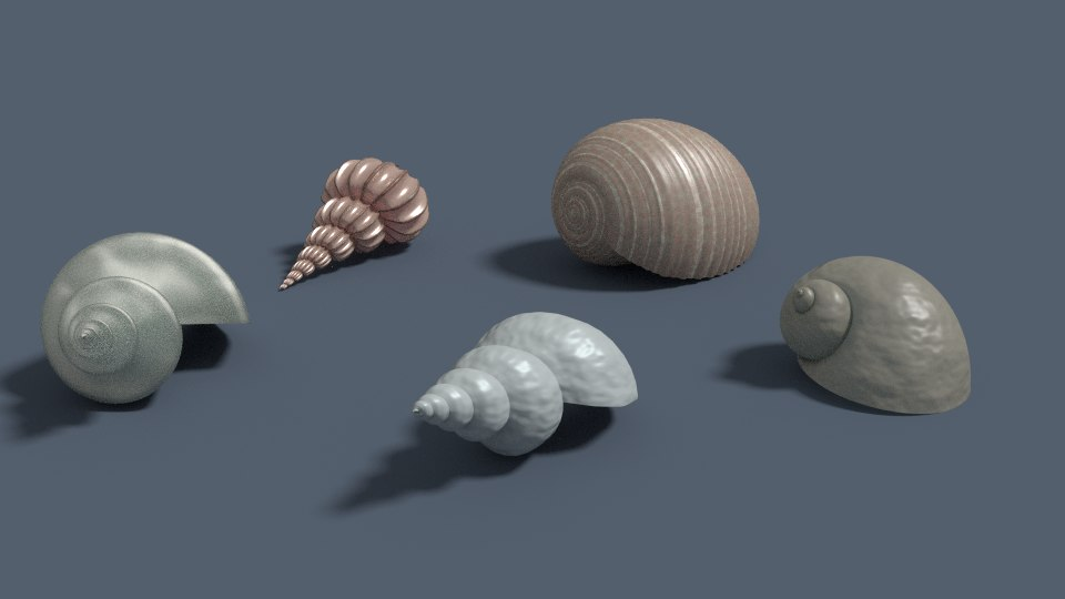 3d model seashell sea shell