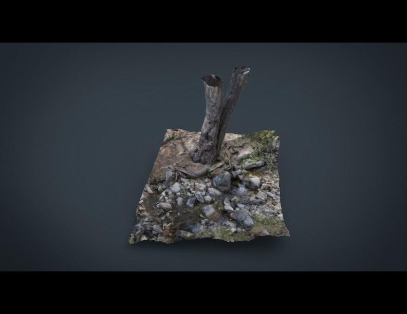 tree river 3d model