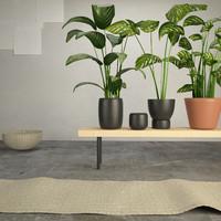 max ikea plants