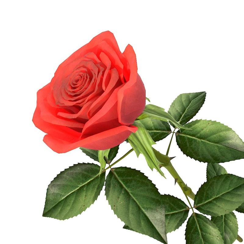 3ds rose red v1 02