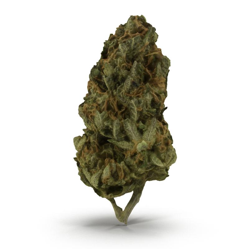 3d cannabis bud