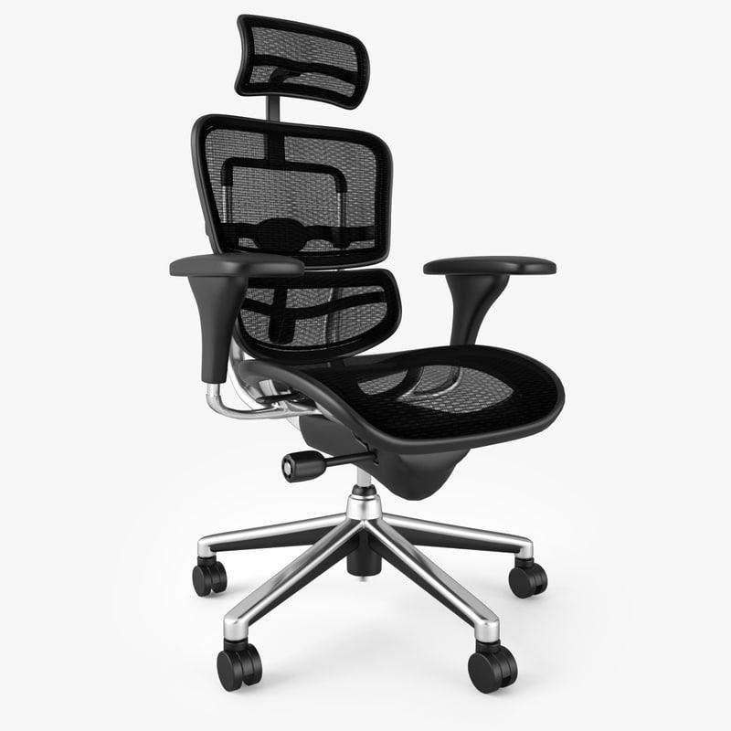 Raynor Ergohuman Chair & 3ds max raynor ergohuman executive chair