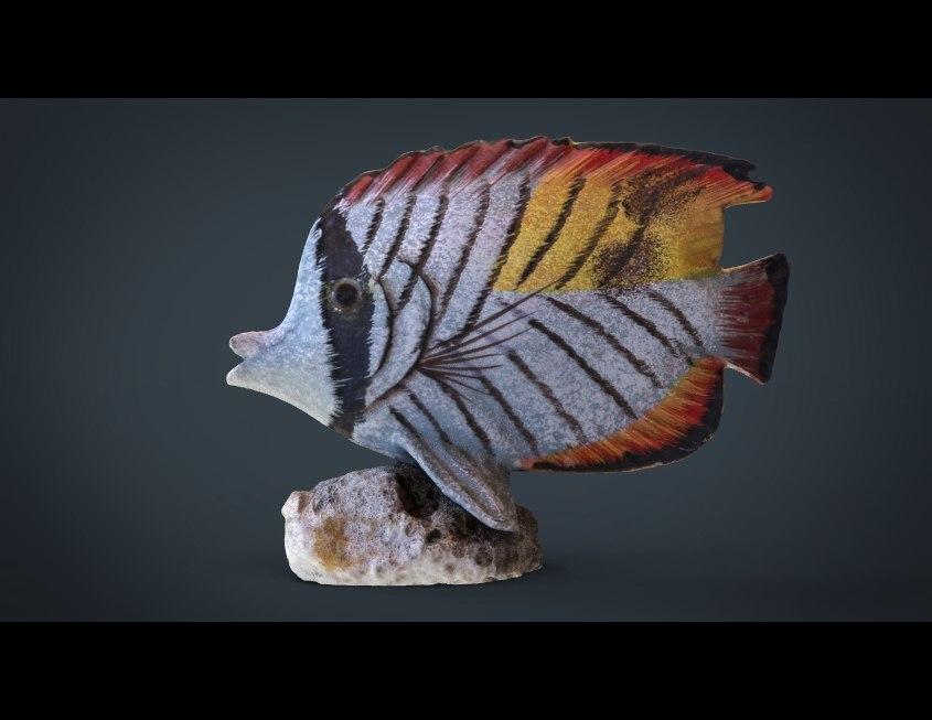 fish decorative obj