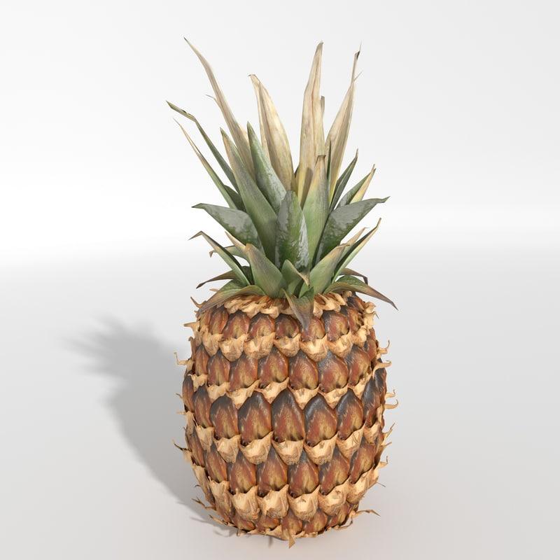 3d realistic pineapple model