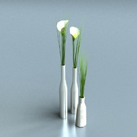3d 3ds vase real time