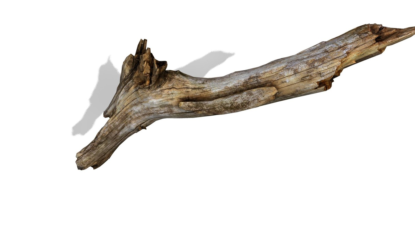 branch rotten wood 3ds