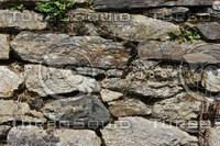 Wall_Texture_0078