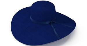 blue hat women 3ds