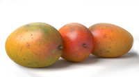 3d model realistic mango