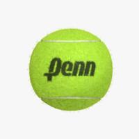 fiber ball 3d model