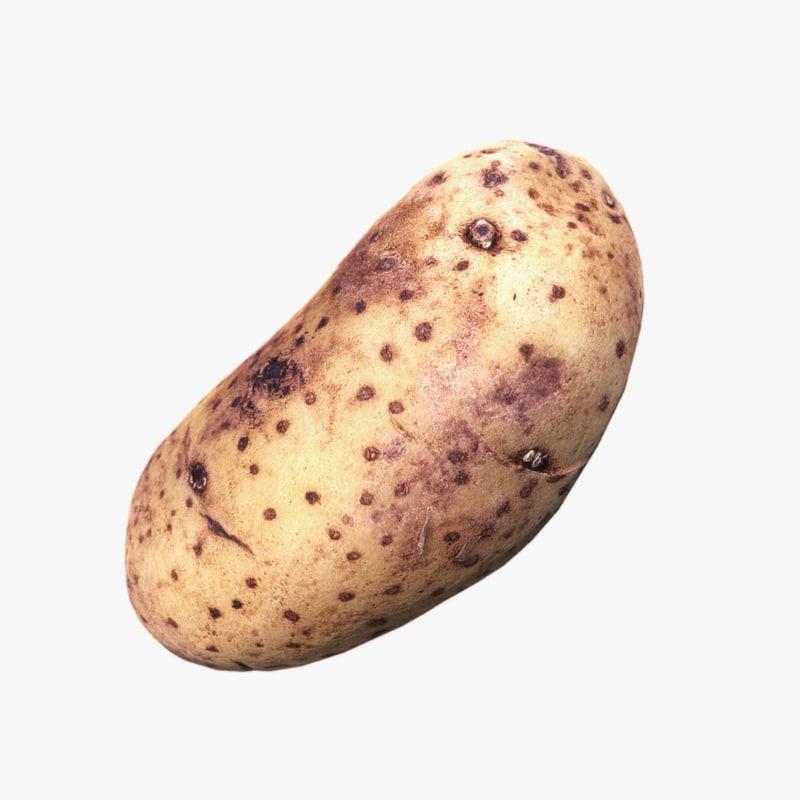 potato scan 3d max