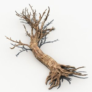 scary tree dry 3d model