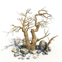 Dry Tree and Rock 01