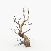 Dry Tree 02