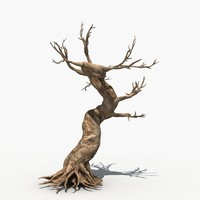 Dry Tree 05