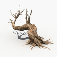 Dry Tree 07