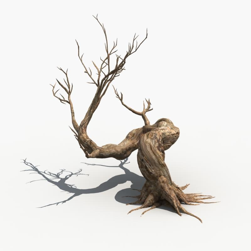 3ds max scary tree dry