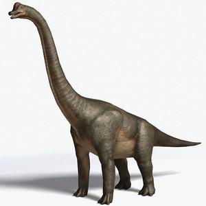 3d brachiosaurus sauropod model
