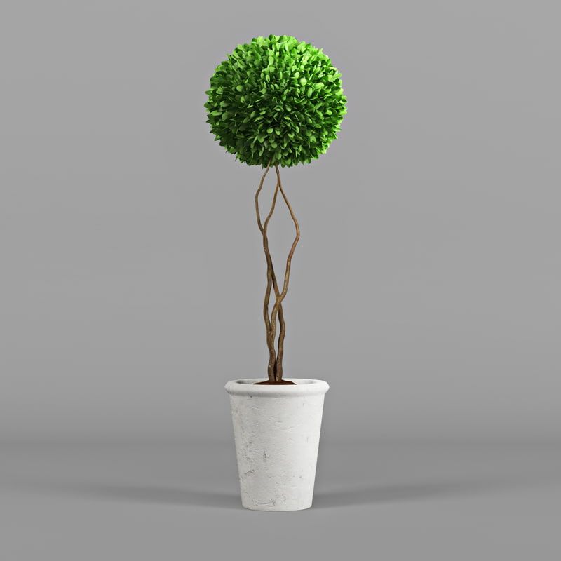 3d model bush decorative