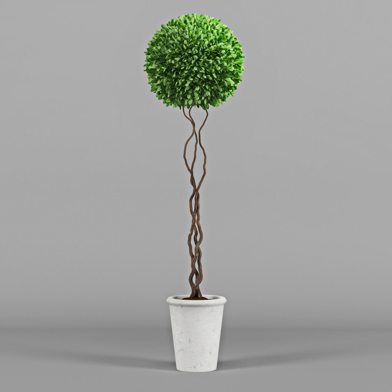 bush decorative 3d model