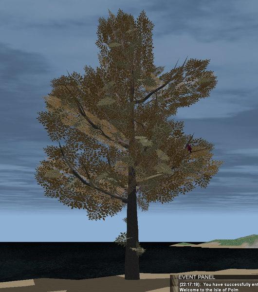 3d ash tree