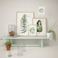 3d model plants pictures