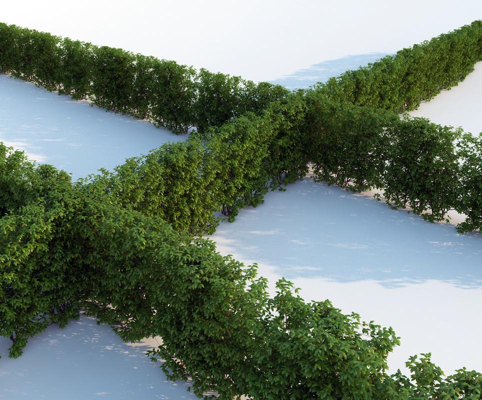 obj - plants