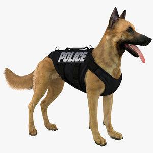 3d belgian shepherd dog police model
