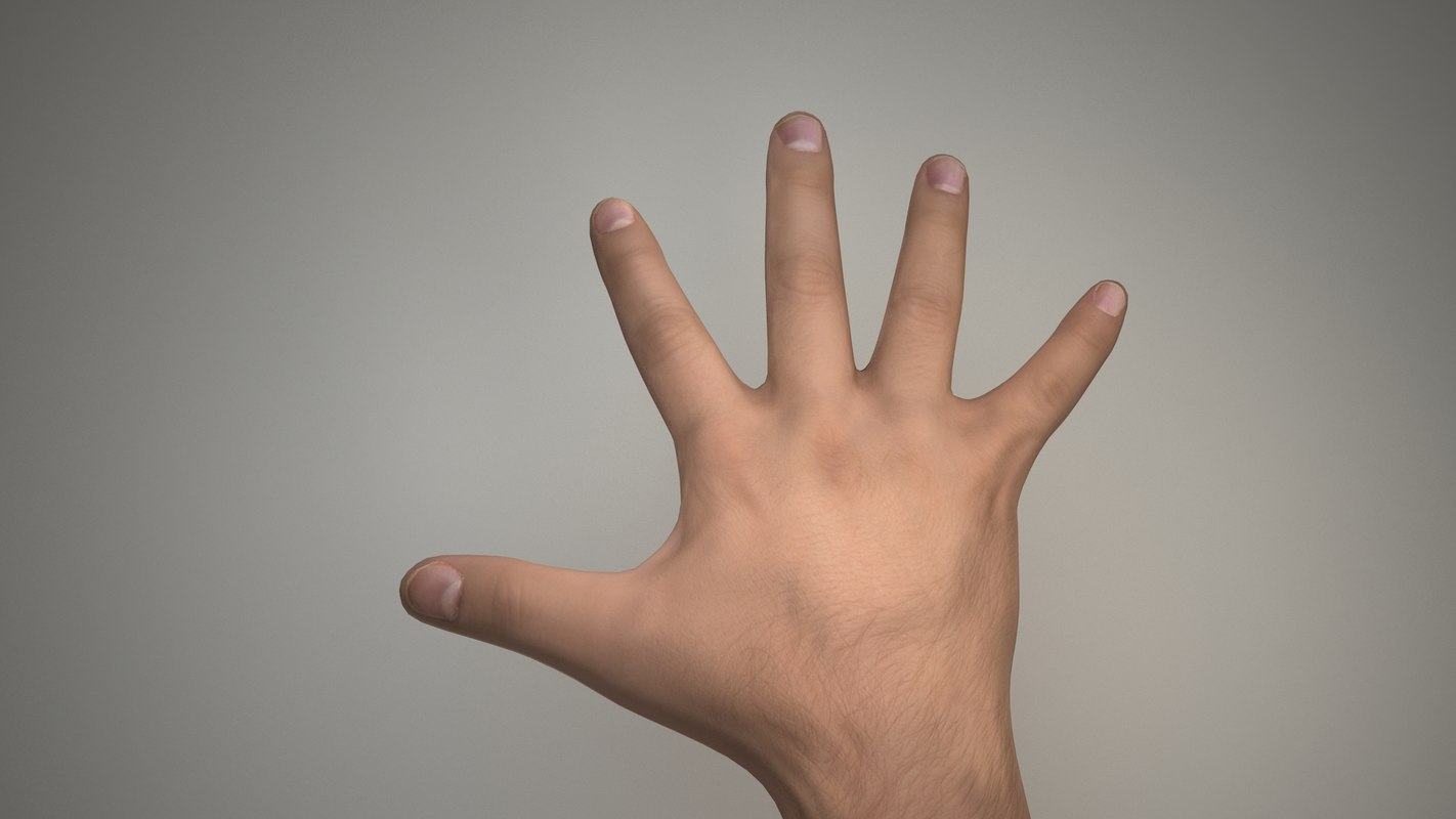 3d hand rigged