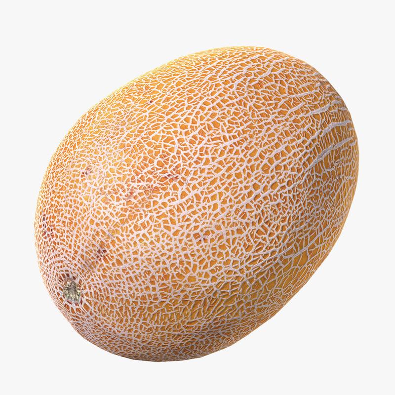 max melon scan