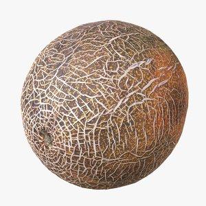 melon scan 3d model