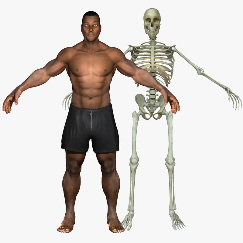 3d african american skeleton body model