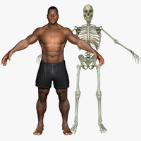 3d african american skeleton body model