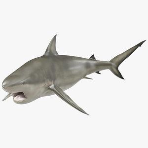 pigeye shark pose 2 3d c4d