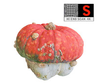 3d model magic mushroom pumpkin