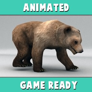 rigged brown bear animation ma