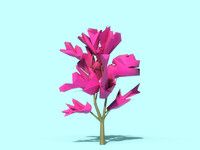 Beautiful Low Poly Tree 02