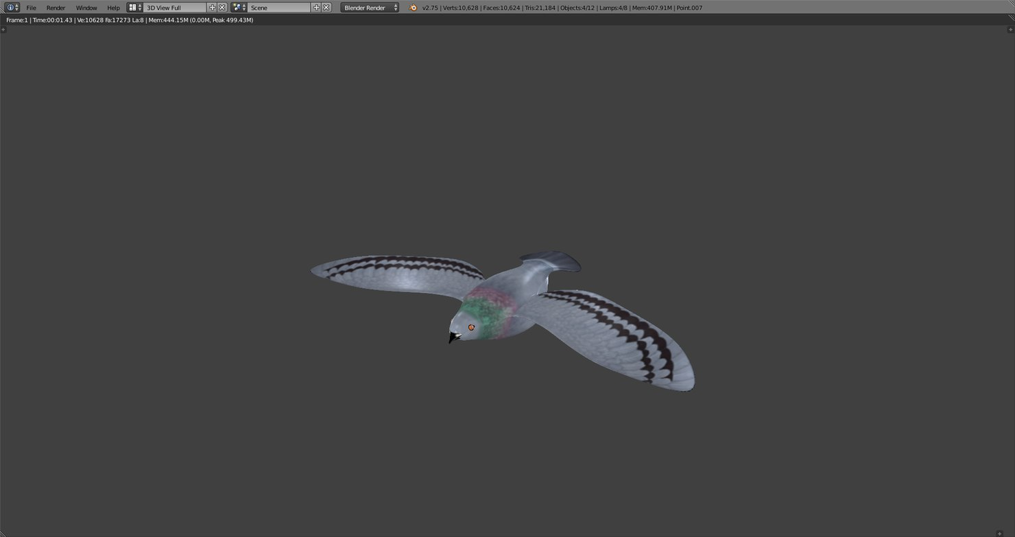 3d model rigged pigeon