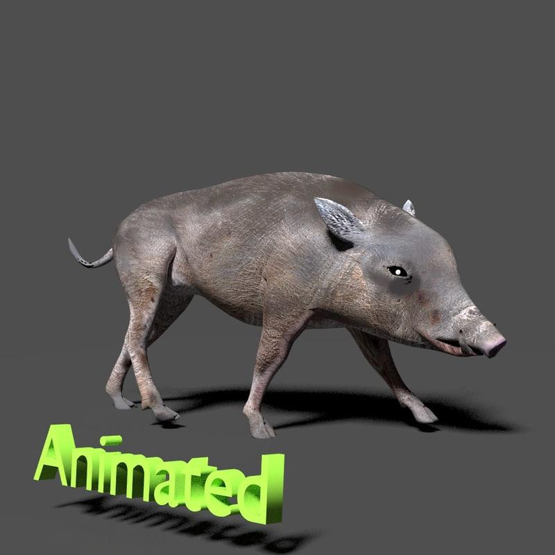 wild boar 3d max