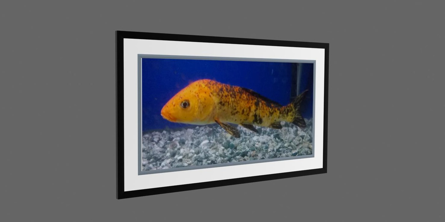 3d model frame photo fish