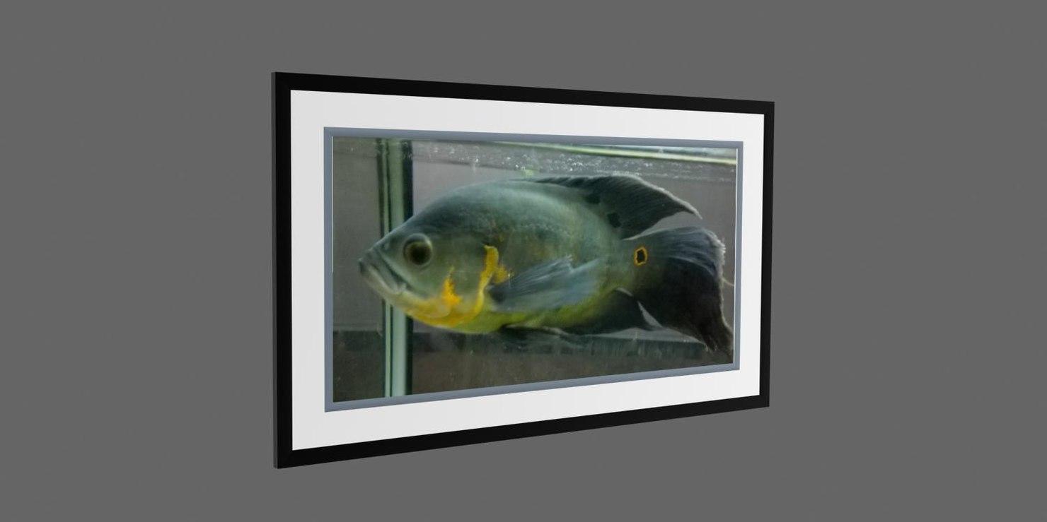 photo frame fish 3d x
